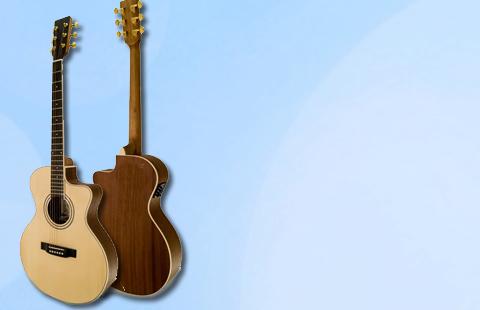 Ver Guitarra Acústica APC EA 100 CW