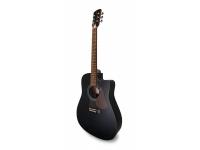 Western Guitar APC WG 100 BK CW