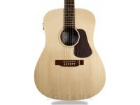 Western Guitar APC WG 100
