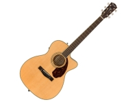 Fender PM-3 STD Triple 0 Natur