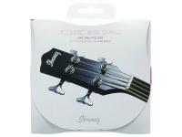 Ibanez IACS61C Acoustic Steel Strings .040-.095
